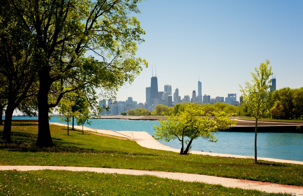 Excellent and vivid picture of the park in Chicago