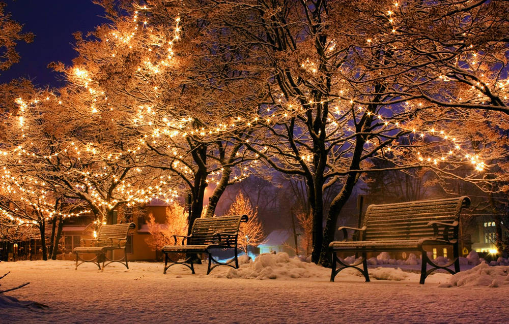 Christmas Park Wallpaper Hd World Cities Photos For