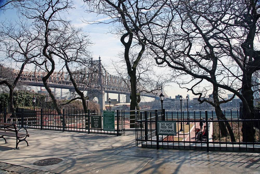 The Park in New York.