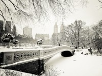 Great widescreen picture snowy winter Central Park